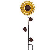 Desert Steel Outdoor Garden Flower Bird Feeder - M46622