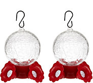 Set of 2 Crackle Glass Hummingbird Bird Feeders - M48625