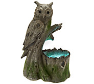 Woodland Creature Owl Light Up Electric Fountain - M42827