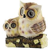 Solar Owl Spotlight - M113533