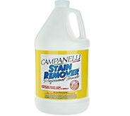 Gallon Size Professional Stain Remover by Campanelli - M114635