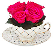 Luxe Bloom Preserved Roses with Decorative Tea Cup and Saucer - M50536