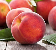 Cottage Farms Peach Me Red Patio Tree - M57242
