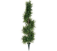 English Gardens 30 Spiral Boxwood Topiary with 6 Stake - M53149
