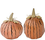 Desert Steel Outdoor Pumpkin Luminary - M47558