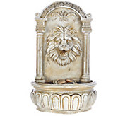 Bernini Rechargeable Indoor/Outdoor Lion Head Wall Fountain - M48858