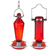 Set of 2 Hanging Glass Hummingbird Feeders