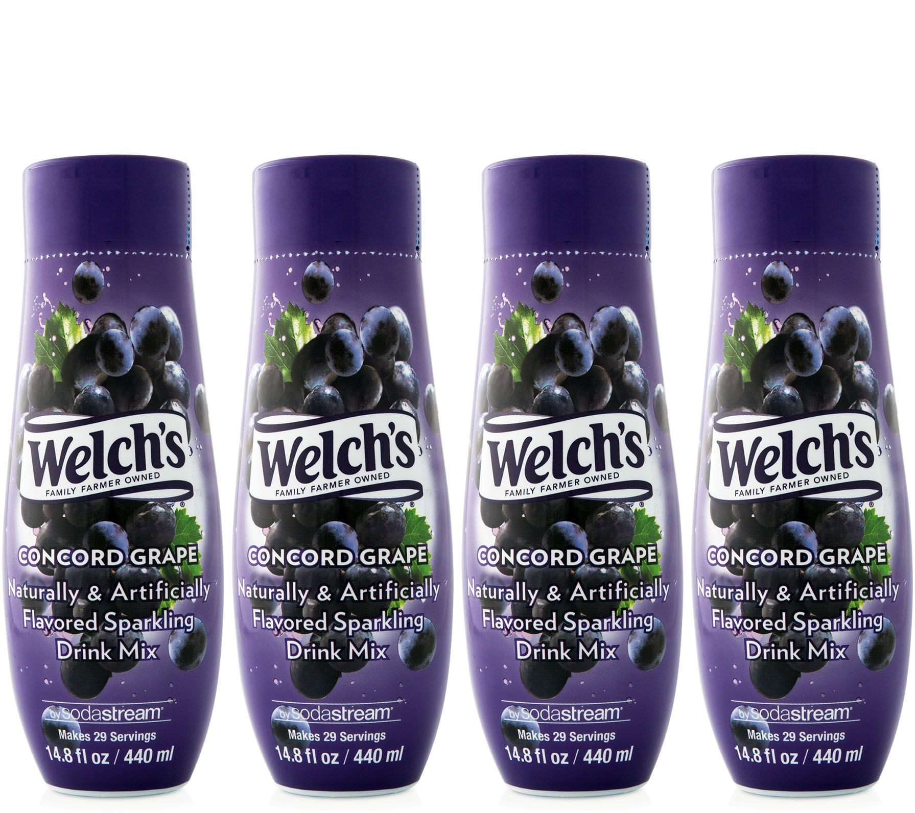 SodaStream Welch's Concord Grape Sparkling Drink Mix 4 ...