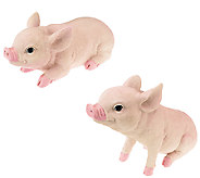 Plow & Hearth Set of 2 All-Weather Resin Piglet Garden Statues - M42763