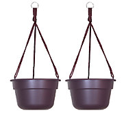 Bloem 10 Dura Cotta Hanging Basket, 2-Pack - M114465