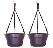 Bloem 10 Dura Cotta Hanging Basket, 2-Pack - M114465