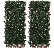 Compass Home Set of 2 Expandable Faux Ivy Privacy Fences - M50866