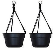 Bloem 12 Dura Cotta Hanging Basket, 2-Pack - M114467