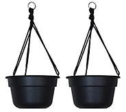 Bloem 12 Dura Cotta Hanging Basket, 2-Pack - M114467