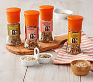 Rachael Ray Set of 4 Around the World Seasoning and Salt Grinders - M55172