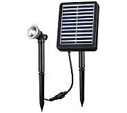 Kenroy Home Solar Spotlight 1W - M114173