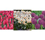 Robertas 215-piece Showstopping Spring Garden Collection - M54975