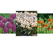 Robertas 187-piece Beautiful Blooms of Spring Garden - M54977