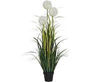 Indoor/Outdoor 50 Artificial Allium Arrangement with Pot - M56277