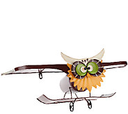 Plow & Hearth Indoor/Outdoor Owl Biplane Metal Shelf - M44482