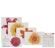 Easy Arranger Set of 5 Floral Arranging Guides w/ Crystal Gems