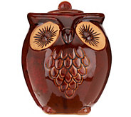 Indoor/Outdoor Owls a Hoot Firepot with Organica Fuel & Media Roll - M42788