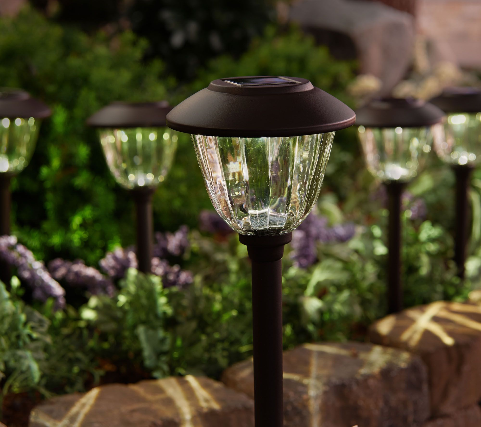 paradise garden lighting spectacular effects. Paradise Garden Lighting Spectacular Effects O