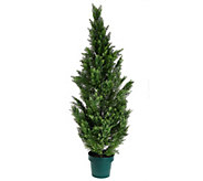 National Tree Feel Real 63 Cedar Tree with Growers Pot - M49196