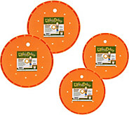 Bloem Living Set of 4 Ups-A-Daisy Planter Inserts - M52799