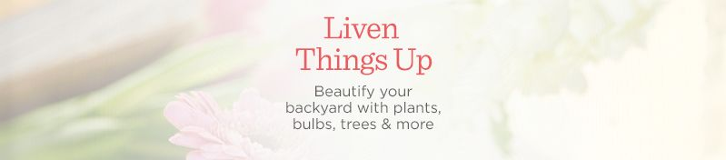 Liven Things Up. Beautify your backyard with plants,  bulbs, trees & more