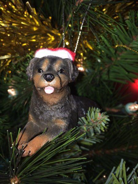 Rottie Ornament