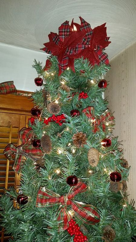 Classic Tree