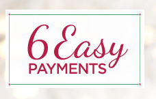 6 Easy Payments