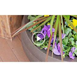 Small Garden Creation