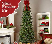 bethlehem lights indoor ready shape pre lit slim frasier fir tree - Clearance Christmas Trees