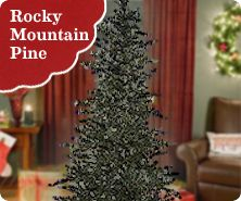 Bethlehem Lights pre-lit Rocky Mountain Pine tree