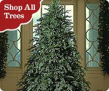 bethlehem lights 712u0027 hunter fir tree with pinecones - Prelit Christmas Tree