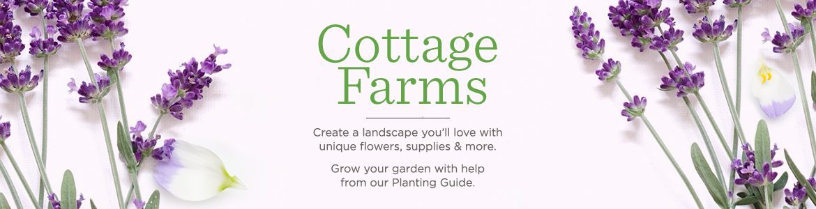 Cottage Farms. Create a landscape you'll love with unique flowers, supplies & more.  Grow your garden with help from our Planting Guide.