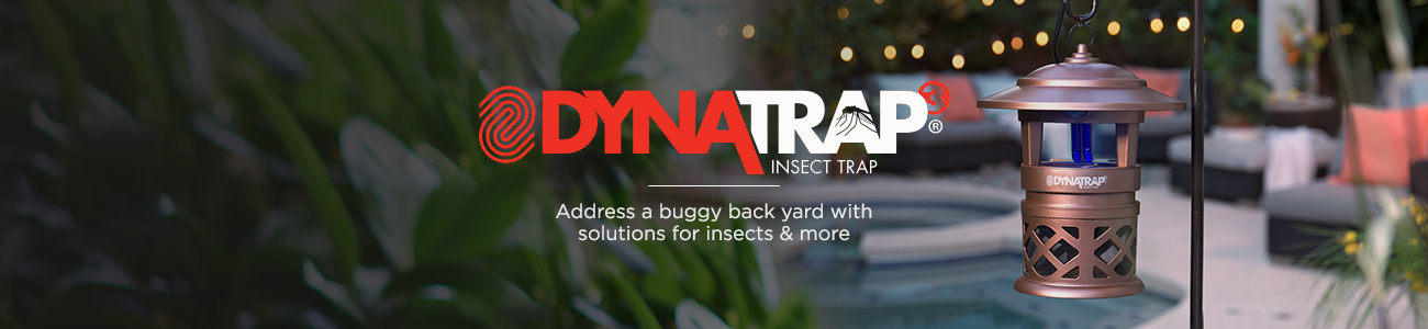 Address a buggy back yard with solutions for insects & more.