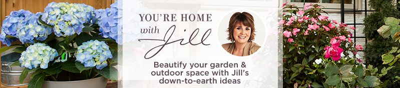 You're Home with Jill. Beautify your garden & outdoor space with Jill's down-to-earth ideas
