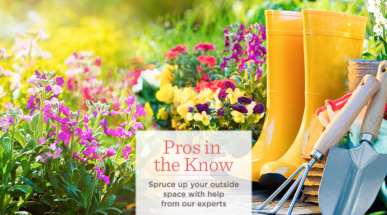 Pros in the Know Spruce up your garden & outside space with help from our experts