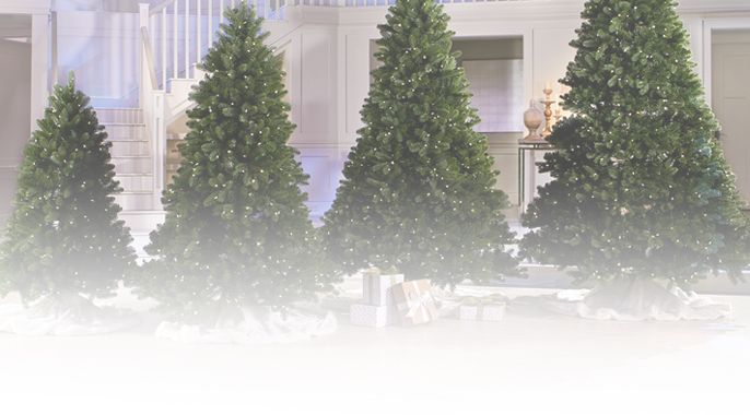 Santa's Best Colorado Spruce Christmas Tree