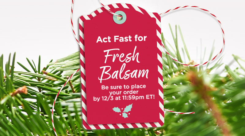 Act Fast for Fresh Balsam. Be sure to place your order by 12/3 at 11:59pm ET!
