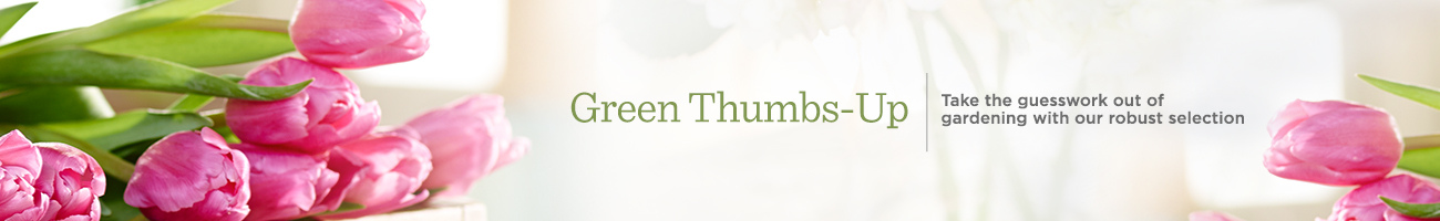 Green Thumbs-Up Take the guesswork out of gardening with our robust selection