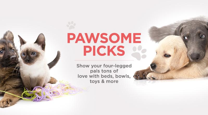 Pawsome Picks. Show your four-legged pals tons of love with beds, bowls, toys & more
