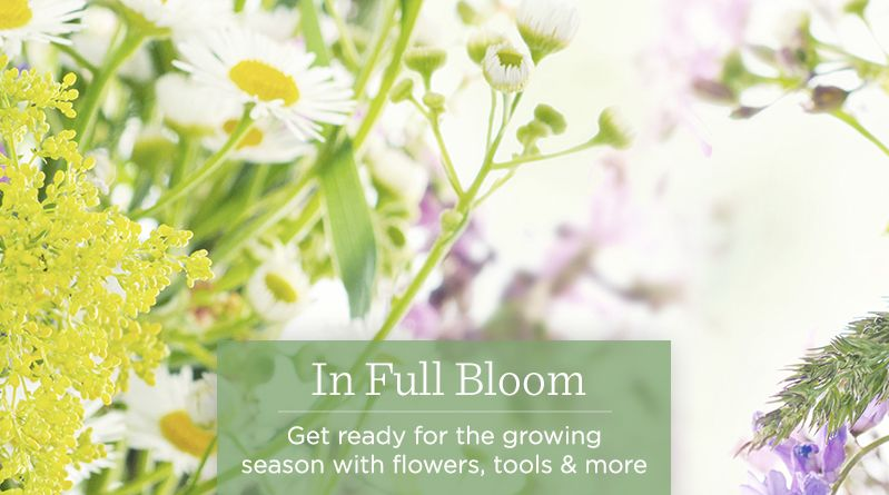 In Full Bloom. Get ready for the growing season with flowers, tools & more