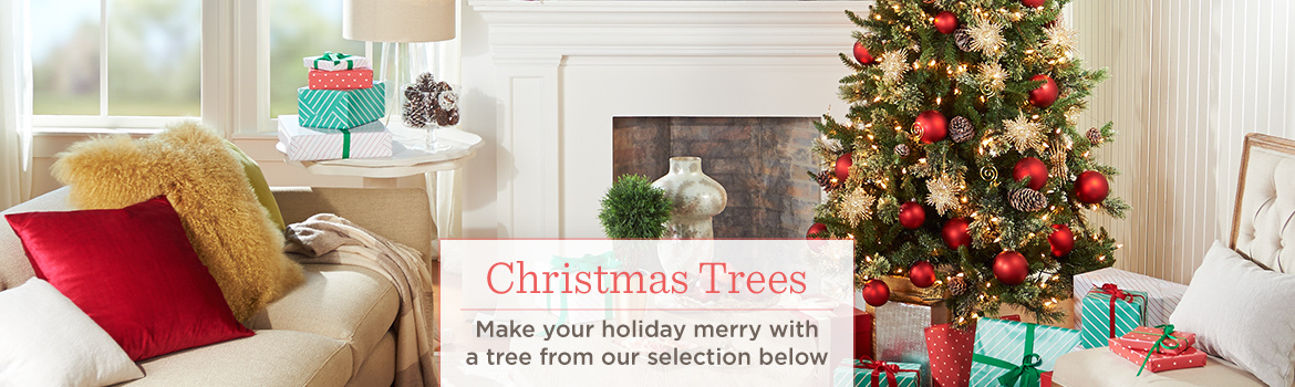 Christmas Trees, Make your holiday merry with a tree from our selection below