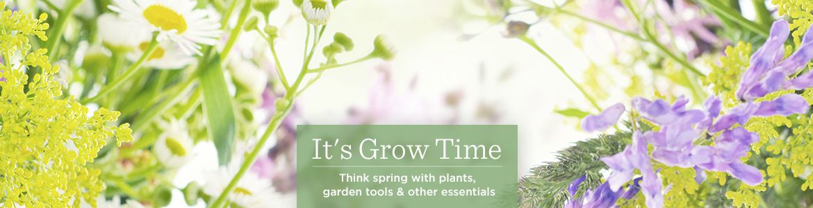 It's Grow Time. Think spring with plants, garden tools & other essentials