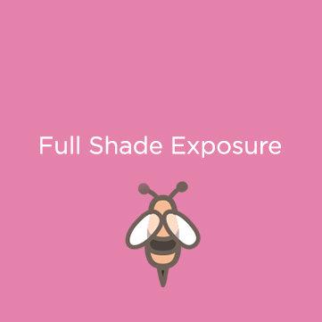 Full Shade Exposure