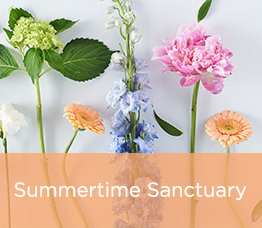 Summertime Sanctuary